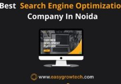 Best search engine optimization company in Noida 63